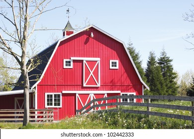 A bright red barn stands in the mid-day sun/Bright Red, Barn/A red barn in a rural area