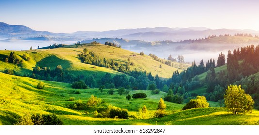 Bright rolling countryside around a farm in the morning light. Picturesque day and gorgeous scene. Location place Carpathian, Ukraine, Europe. Concept ecology protection. Explore the world's beauty.