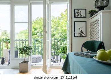 Bright room interior with two posters, magazine on table and balcony with pouf, fresh plants and lights in real photo