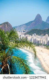 Bright scenic overview of the Rio de Janeiro, Brazil city skyline with a palm tree in front of the shore of Copacabana Beach with towering mountains
