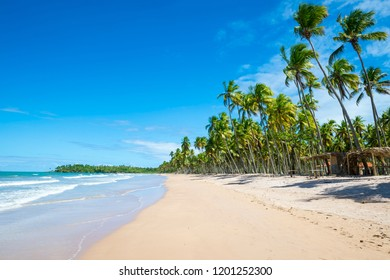 Bright scenic view of long deserted beach on a remote island off the coast of Bahia, Brazil