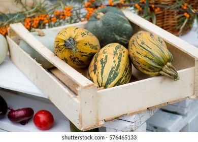 The bright seasonal vegetables zucchini in a box