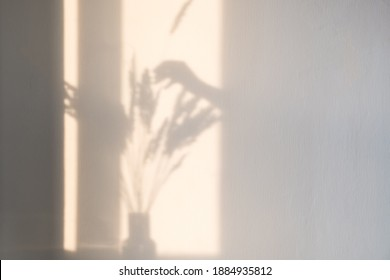 A bright shadow of a woman's hand adds a spike of dry grass to a bouquet of dried flowers against a light wall