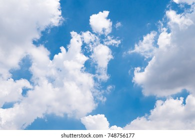 bright sky and white cloud under the sun light