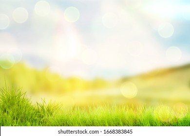 Bright spring or summer background