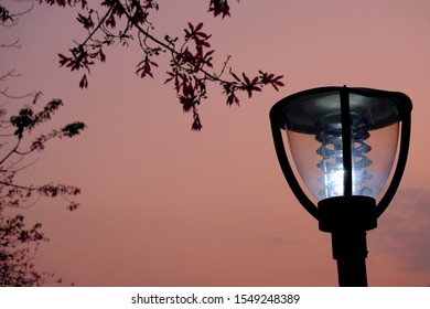 Bright street lights on the roadside pillars. The LED lights are protected by a glass cover. It has the function of waterproof and windproof. The background is orange afterglow and flowers and leaves.