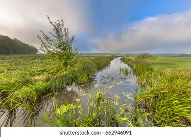 Bright summer landscape of a lowland river valley with mist opening to low clouds and strong headwind near Eelde, Drenthe Netherlands