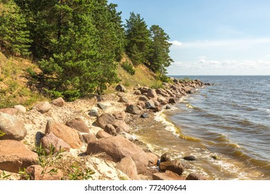 Bright summer sunny landscape. The coast of the Talabsky Island. Pskov Lake, Russia.