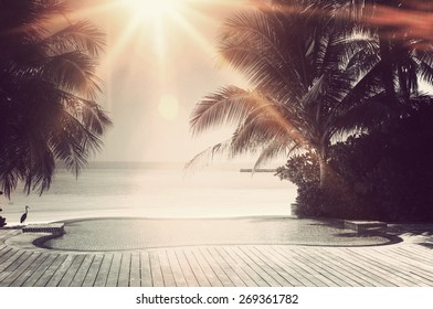 Bright sunburst over a luxury tropical infinity pool framed with palm trees overlooking the ocean on the island of Maldives in a travel concept