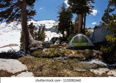 Bright sunlight falls on mountain campsite in California's Desolation Wilderness, not far from Lake Tahoe. This beautiful part of the Sierra Nevada Mountains is popular for camping and hiking.