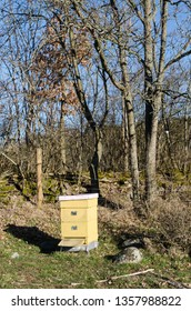 Bright sunlit beehive in a rural landscape