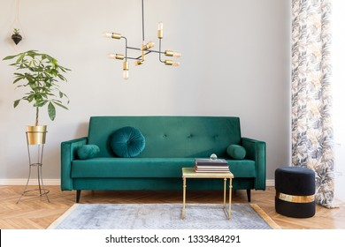 Bright and sunny minimalistic home interior with design green velvet sofa, furniture,plant, gold coffee table with books and elegant pendant lamp. Brown wooden parquet. Stylish decor of living room.