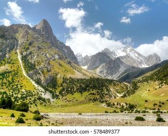 Bright sunny mountain valley