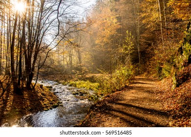 Bright sunny sky in the fall autumn moderate forest with the wild river and the path on side