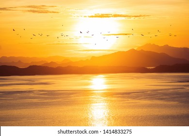 Bright sunrise with large yellow sun under the sea surface. Birds flying over the mountains on sunrise landscape background. Freedom concept.