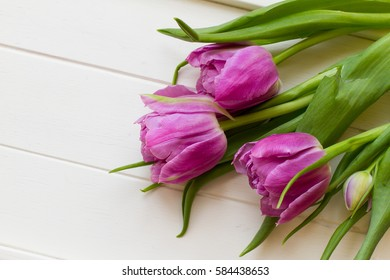 Bright violet tulips on white wooden background