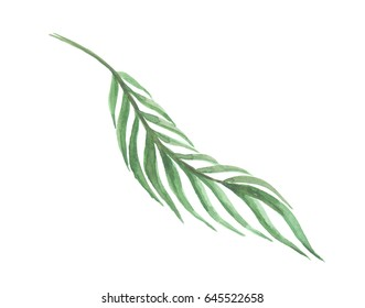 Bright watercolor leaf isolated on easy for cut white background