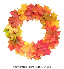 Bright wreath of autumn leafs of maple isolated on white background