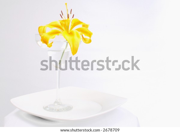 Bright yellow lily in a margarita glass on a white plate