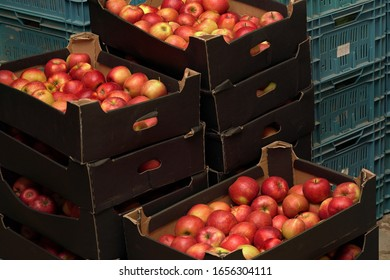 Bright yellow and red apples in stacked paper carton boxes at fruit warehouse