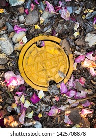 Bright yellow water meter cover with rose petals, leaves, rocks, and other twigs and branches.