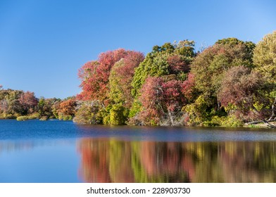 Brightly colored foliage along a river in autumn with reflections