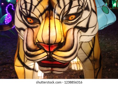 A brightly lighted face of a tiger, in the style of a Chinese lantern, glows at night in a timed exposure