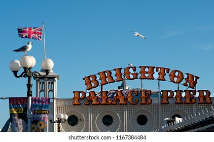 Brighton and Hove, Sussex, UK, March 2018. A seagull perches near a Union Jack flag the newly renamed sign for the Brighton Palace Pier at the seaside of Brighton and Hove.
