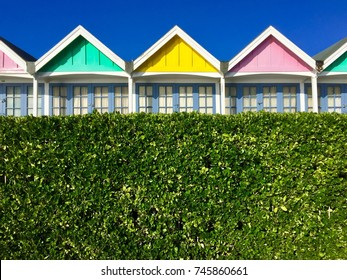 Brighty coloured beach huts behind a verdant hedge on a bright sunny day in Weymouth, England, UK