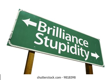 Brilliance & Stupidity road sign isolated on a white background.