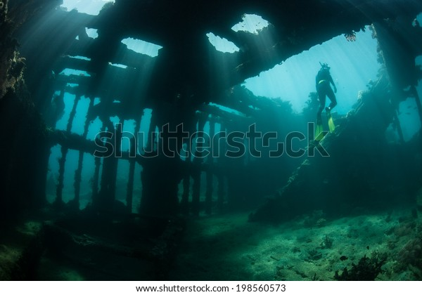 Brilliant beams of sunlight illuminate the remains of a shipwreck in the Solomon Islands. Many ships were sunk in this area during World War II. The wrecks now make artificial reefs.