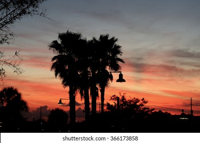 Brilliant blazing orange and blue Florida sunset with silhouette of Palm trees and lamp shades.