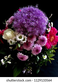 Brilliant bouquet of flowers in purple, pink, white. Roses, gerbera, asters and one big allium with its countless little filigree blossoms, green leaves. Black background, bright colors. Close up.