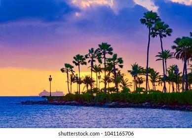 Brilliant ocean sunset with palm trees. Caribbean Aruba