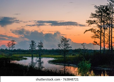 brilliant sunset reflecting in a lake through cypress trees in Louisiana