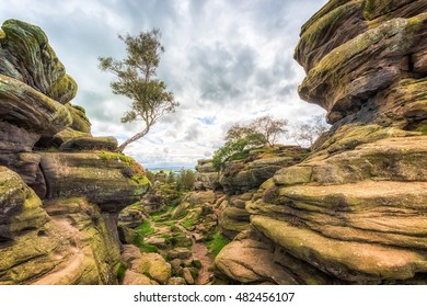 Brimham rocks yorkshire dales england uk.
