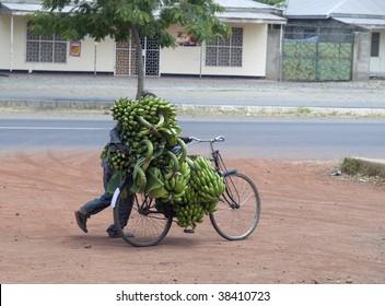 Bringing home the bananas
