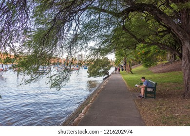 Brisbane, Australia - February 20, 2016: Man reading a book on a bench in Brisbane City Botanic Gardens