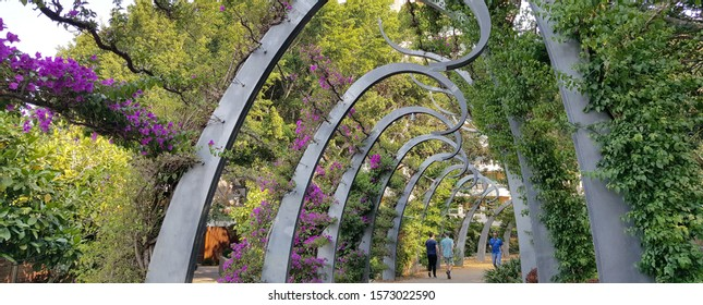 Brisbane, Australia - Nov 2019: A view of the award-winning South Bank Grand Arbour. It is a kilometre long arbour, curled spires draped in ever blooming bougainvillea, leads throught the parklands.