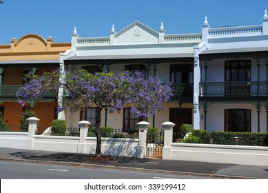 BRISBANE, AUSTRALIA, October 13, 2012: Jacaranda in Spring Hill