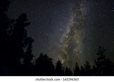 Bristlecone Pine Forest 02 Milky Way Galaxy California USA
