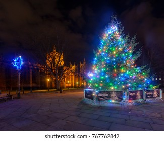 Bristol, England - Dec 3, 2017: Christmas Tree and Lights in front of Bristol Cathedral B, Long Exposure Night Photography