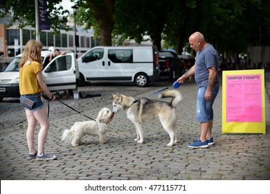Bristol, UK - September 1, 2016: Dog owners meet on a habourside street in the city centre.