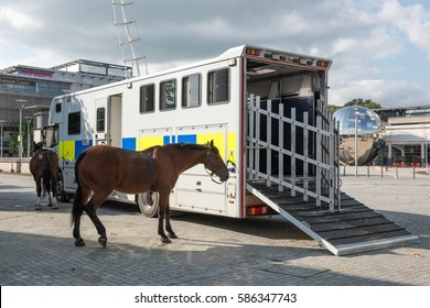 Bristol, UK - September 14, 2016: two police horses and police horse box in Millennium Square, Bristol UK. It is a hot Summer's day and the horses are cooling off after duty.