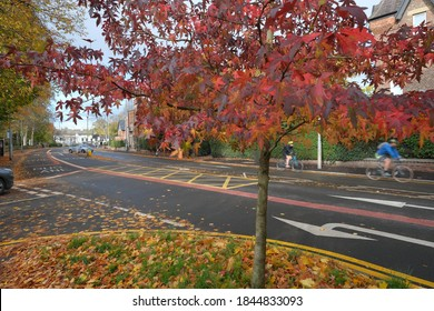 British 'boxed' suburban road junction and other road markings, with cyclists and cars, in autumn: Didsbury, Manchester, England, UK.