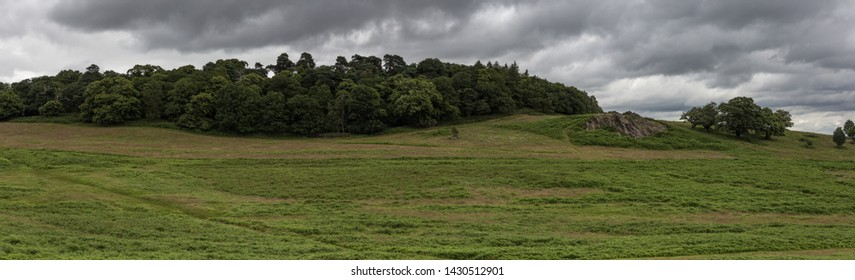 British landscape panorama of Bradgate Park
