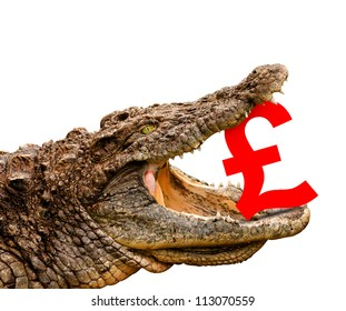 British Pound symbol eaten by crocodile for sale, crash or discount. Clipping path included! Ready for print or web page.
