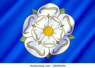 The British Regional flag of Yorkshire -  White Rose of York on a blue background. The design dates from the 1960s.