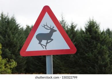 British road warning sign for deer