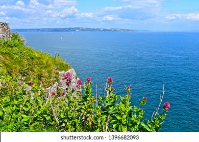 Brixham, Devon / England - 5/5/2019: Berry Head is a rocky cliff top headland overlooking the sea near Brixham.This is the view across Torbay towards Torquay in the distance. Yachts sailing in the bay